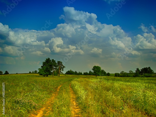 Papiers peints Herbe huge cumulus cloud on the field road summer pine in the distance rural landscape