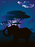 African Night with Elephant - 183444261