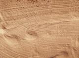wet sand - 183446830