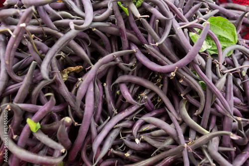 Purple bush beans at the farmers market.
