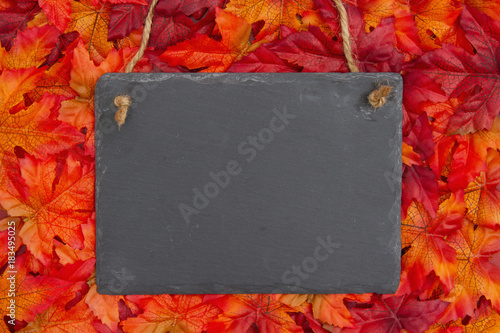 Autumn scene with a chalkboard and fall leaves - 183495025
