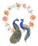 Hand drawn watercolor couple of peacocks on the floral wreath isolated on the white background - 183499476