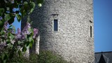 Medieval tower - part of the city wall. Tallinn, Estonia. - 183506400