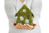 selbstgebasteltes grünes Mooshaus in den Händen halten - 183511889