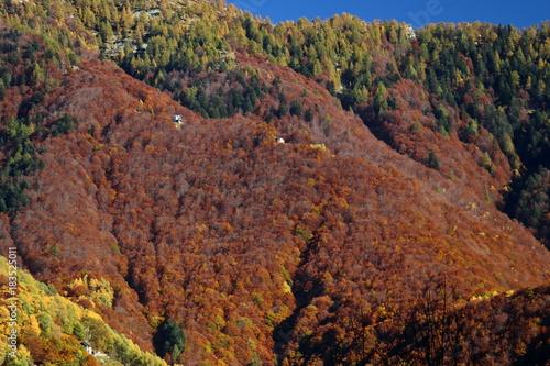 Autumn in Ticino