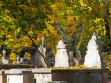 Old stone graves at autumn leaves background. - 183527052