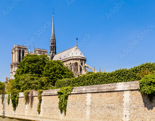 Plexiglas Nice Notre Dame de Paris Catholic Christian Cathedral with the Seine river on a sunny spring day. View from the water. Paris