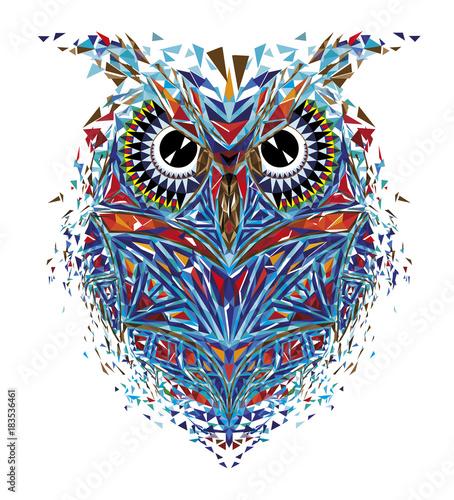 Tuinposter Uilen cartoon Kaleidoscopic owl in red-blue tones