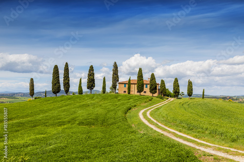 Papiers peints Toscane Rural landscape of Tuscany, Italy, San Quirico d'Orcia