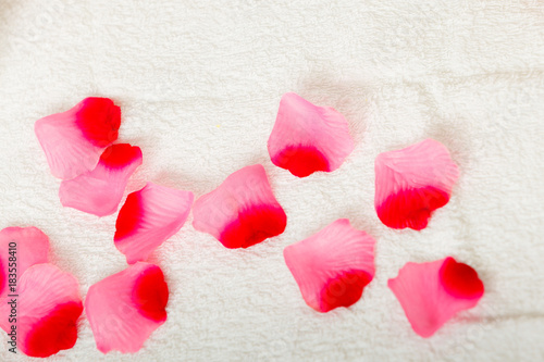 Pink and red rose petals on white towel