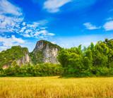 Beautiful rural landscape. Luang Prabang. Laos. - 183563449