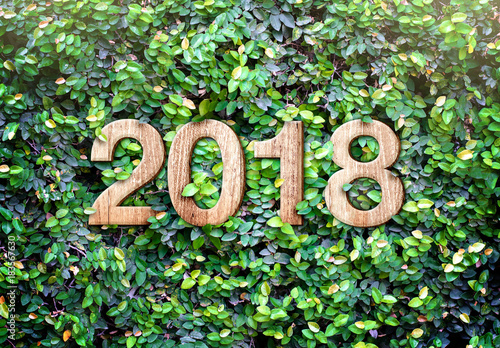 2018 new year wood texture number on Green leaves wall background,Nature eco concept,organic greeting card holiday