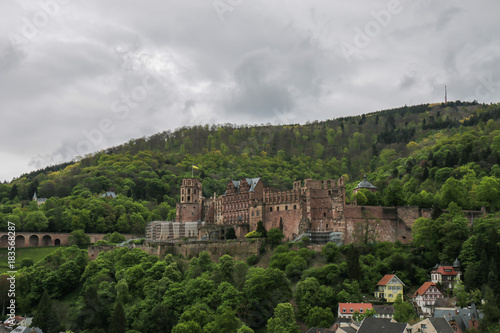 Wall mural Heidelberg Castle and surrounding forest on the hill