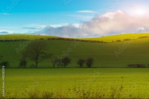 Plexiglas Pool Green field and blue sky