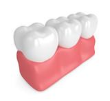 3d render of teeth in gums - 183584234