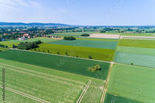 Plexiglas Olijf Landschaft in Deutschland