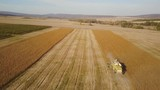 combine harvester collects soybean - 183607054