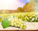 Grape. - 183611222