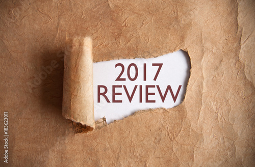 2017 review Poster