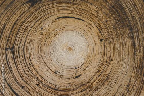Plexiglas Bamboe picture
