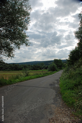 In de dag Weg in bos Poboczne drogi
