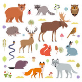 Vector illustration of forest animals: moose, deer, bear, hedgehog, rabbit, squirrel, beaver, wolf, fox, raccoon, owl, grass snake, isolated on white background.
