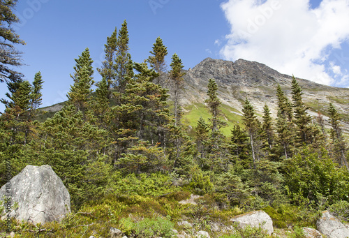Foto op Canvas Natuur Alaska's Skagway Town Outdoors