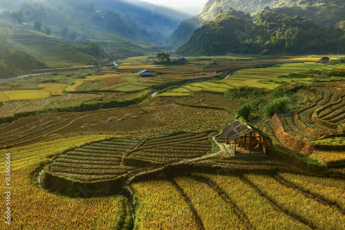 Fotobehang Rijstvelden Bright morning of rice terraces in Mu cang chai,Yenbai,Vietnam.