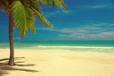 beach and tropical sea - 183677647
