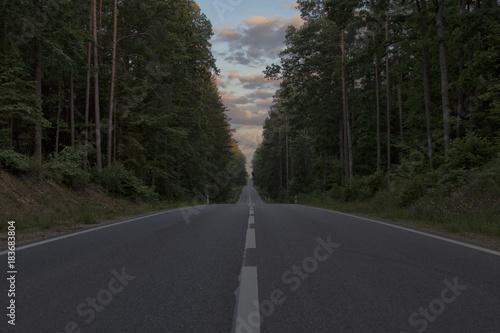 In de dag Weg in bos Droga, las, sunrise, Podlasie, Polska