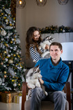 Beautiful young couple in the New Year atmosphere with puppies of the Husky - 183692206