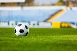 Soccer Ball on Grass - 183692865