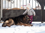 Girl meets a dog on winter walk - 183723615