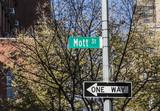 street sign Mott street