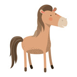 horse cartoon colorful silhouette in white background vector illustration