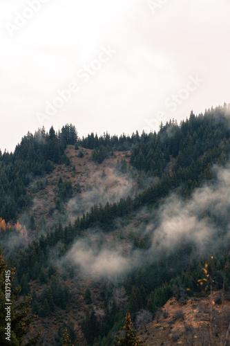 Autumn scenery from Rhodopi mountains, Bulgaria