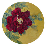 bright and velvet bordea peony - 183773662