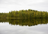 Reflections on the autumnal forest. Autumn view in Finland. Calm reflective waters. - 183783483