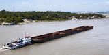 Paraguay River in Asuncion - 183805029