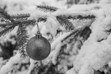 Christmas Tree Bauble Black and White with Real Snow - 183810814
