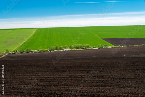Idyllic rural view of pretty farmland in the spring - focus on foreground