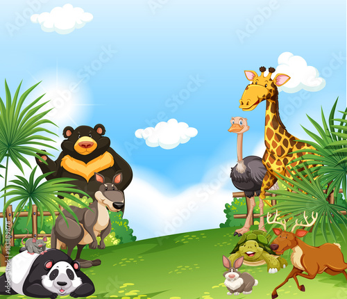 Foto op Canvas Pool Background scene with wild animals in the field