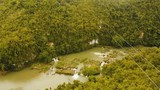 People have fun a zip line through a canyon with a river in the rainforest jungle. Aerial view, tourist attraction at the zipline attraction in the jungle on the island of Bohol. 4K video. Travel - 183891653
