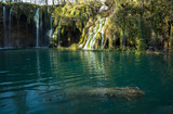 Waterfalls and funny log in the emerald water of Plitvice lake, Croatia