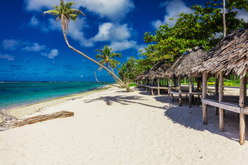Tropical natural beach on Samoa Island with palm trees and wooden fales