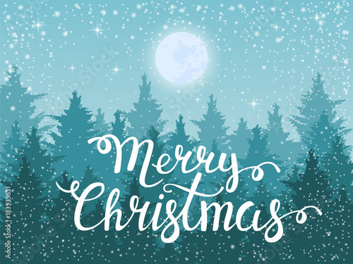Winter night fir tree forest. Vector Christmas background for greeting card or flyer.