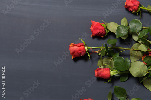 Few orange and red rose flowers on dark chalcboard surface. Bouquet on a blur abstract background with copy space.
