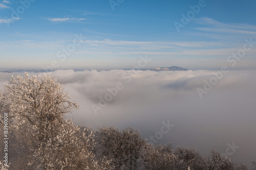 Staande foto Bleke violet misty frosty snow winter landscape in nature, mist flowing, foggy winter landscape from Julianus tower