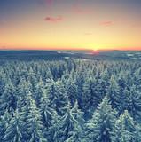 Thüringer Wälder im Winter - 183961610