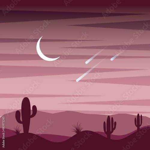landscape sunset desert cactus sky moon and fall stars vector illustration